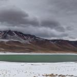 Miniques Laguna, Atacama, Chile